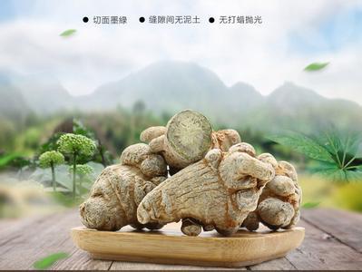 南国神草-三七田七
