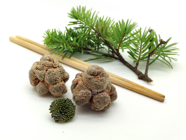 三七还是一种药食同源的植物