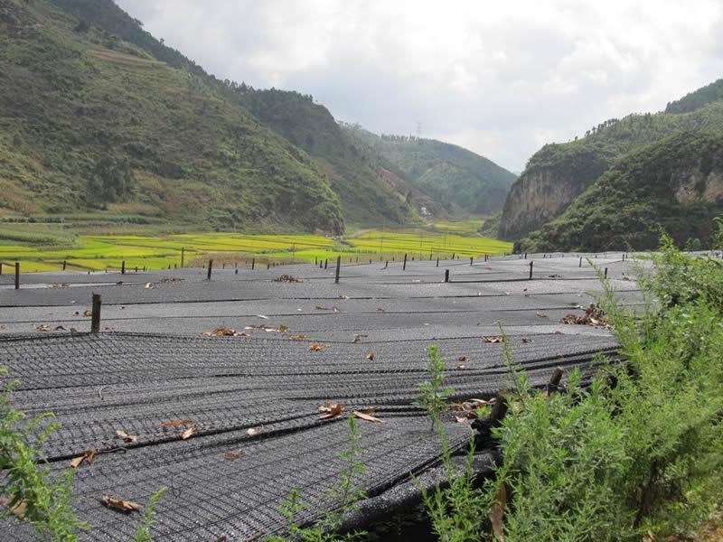 文山州三七产业发展概况和项目建