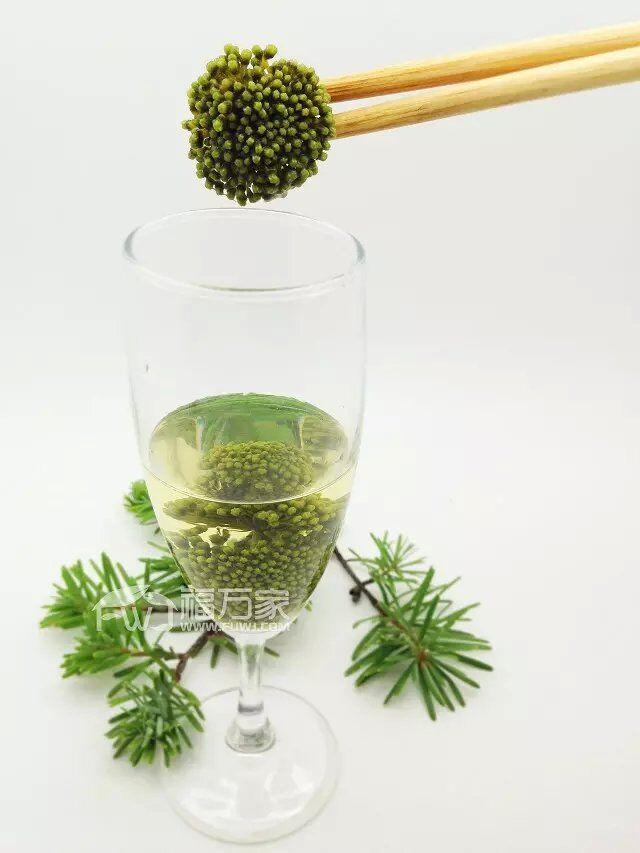 常喝三七花茶有益于保肝,调节心