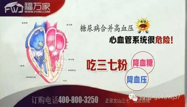 糖尿病合并高血压? 心血管系统