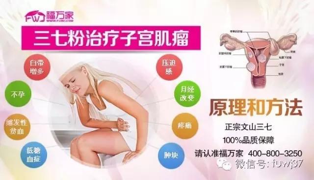 三七粉治疗子宫肌瘤的原理和方法