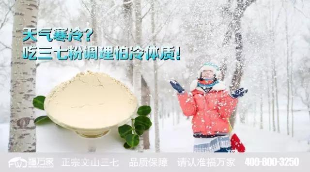 天气寒冷?吃三七粉调理怕冷体质