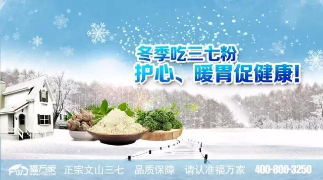 冬季吃三七粉,护心、暖胃更健康