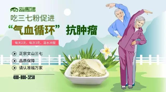"""吃三七粉促进""""气血循环""""抗肿瘤!"""